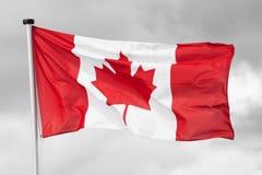 Kanada flagganational Arkivfoto
