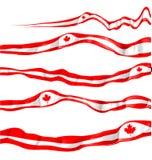 Kanada flaggauppsättning Royaltyfria Foton