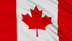 Kanada-Flagge stock abbildung