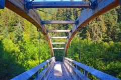 Kanada kolumbiów brytyjska wiszącego mosta drewniani lasowi drzewa obraz stock