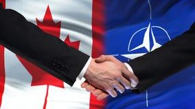 Kanada och NATO-handskakning, internationell kamratskapförbindelse, flaggabakgrund lager videofilmer
