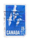 KANADA - OKOŁO 1963: znaczek drukujący obok, przedstawienie migracja Obrazy Stock