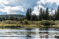 Kanada Ontario sjö av det naturliga lösa landskapet för två floder nära vattnet i Algonquinnationalpark fotografering för bildbyråer