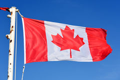 Kanada-Staatsflagge Lizenzfreies Stockbild