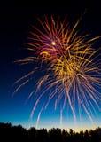 Kanada-Tagesfeuerwerke über dem Treeline Stockfotos