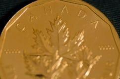 Kanada (Wort) auf kanadischer Goldahornblatt-Münze Lizenzfreie Stockfotos