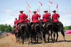 kanadensare monterad poliskunglig person Royaltyfria Foton