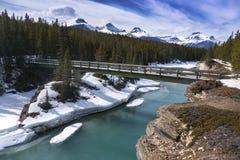 Kanadensare Rocky Mountains för bro för Saskatchewan flodfot arkivfoton
