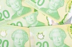 Kanadensare tjugo dollarräkningar #6 royaltyfri foto