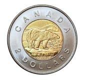 Kanadensare två dollar mynt Royaltyfria Foton