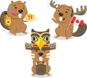 Kanadensisk bäver som rymmer den Kanada flaggan Royaltyfri Bild