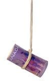 kanadensisk dingla dollar royaltyfria foton