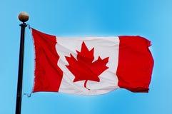 kanadensisk flagga Arkivbilder