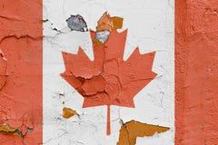 Kanadensisk flagga som målas på en tegelstenvägg Kanada flagga texturerad abstrakt bakgrund Royaltyfri Foto