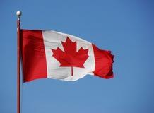 kanadensisk flaggaflaggstång w arkivbild