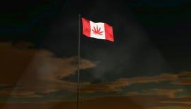 Kanadensisk marijuanabladflagga vektor illustrationer