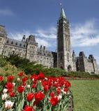 Kanadensisk parlamentbyggnad Arkivbild