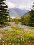 Kanadensisk regnbågeIcefields för steniga berg gångallé Royaltyfri Fotografi