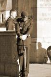 kanadensisk soldat Arkivbilder