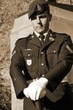 kanadensisk soldat Fotografering för Bildbyråer