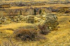 Kanadensiska badlands som skriver på den provinsiella stenen, parkerar, Alberta, Kanada fotografering för bildbyråer