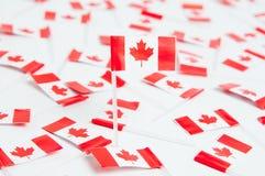 kanadensiska flaggor Royaltyfria Bilder