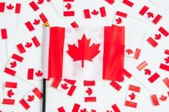 kanadensiska flaggor Royaltyfri Foto