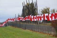 kanadensiska flaggor Arkivbilder