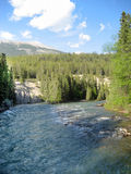 Kanadensiska flodforsar för steniga berg Royaltyfri Bild