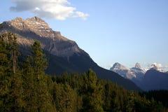 kanadensiska rockies Fotografering för Bildbyråer