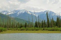 Kanadensiska Rockies. Royaltyfri Bild
