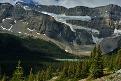 kanadensiska rockies Ranunkelglaciär och pilbåge sjö Royaltyfria Bilder
