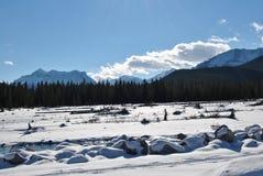 Kanadensiska steniga berg, armbågeflod, natur Arkivfoto