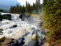 Kanadensiska steniga berg, Athabasca nedgångar Arkivfoton
