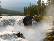 Kanadensiska steniga berg, Athabasca nedgångar Fotografering för Bildbyråer
