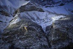 Kanadensiska steniga berg i vinter Arkivfoto