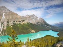 Kanadensiska steniga berg, Peyto sjö Fotografering för Bildbyråer
