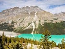 Kanadensiska steniga berg, Peyto sjö Royaltyfria Bilder