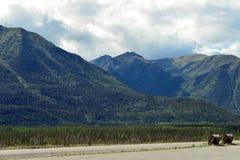 Kanadensiska steniga berg vilar stoppet på den Alaska huvudvägen med Bearproof avskrädeuttag Royaltyfria Bilder