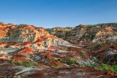 Kanadensiskt landskap: Badlandsna av Drumheller, Alberta Fotografering för Bildbyråer