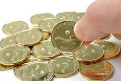 Kanadier eine Dollar-Münze Stockfotografie