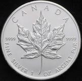 Kanadische Blatt-Münze des weißen Ahorns Stockfotos