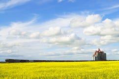 Kanadische Eisenbahn stoppte an einem enormen inländischen Getreideheber lizenzfreie stockfotos
