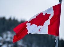 Kanadische Flagge, die im Wind aufgibt Stockbilder