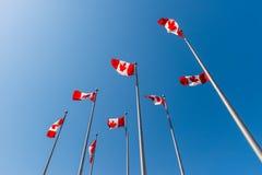 Kanadische Flaggen, die über blauen Himmel wellenartig bewegen Lizenzfreie Stockfotografie