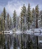Kanadische Gänse im Reflection See, Lassen Nationalpark ` lizenzfreies stockfoto