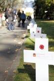 Kanadische gefallene Soldaten und Kreuze Stockfotografie