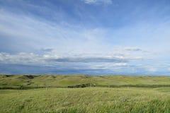 Kanadische Grasland-Landschaft Stockfoto