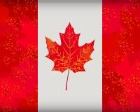 Kanadische Markierungsfahne Lizenzfreie Stockbilder