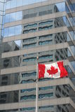 Kanadische Markierungsfahne   Lizenzfreies Stockbild